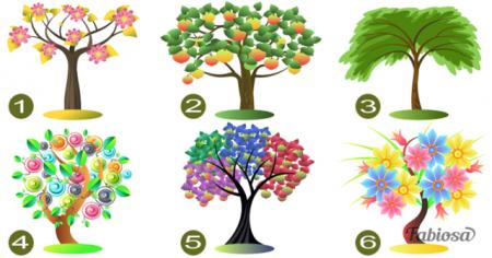 Ընտրեք ծառն ու իմացեք ձեր հոգեբանական դիմանկարը