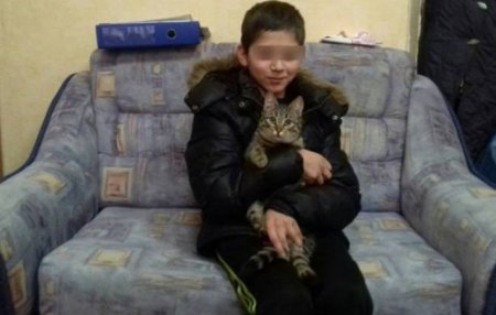Անտուն կատուն տղային փրկել է ցրտից