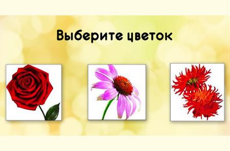 Որ ծաղիկն է ամենագեղեցիկը․ ընտրությունը կբացահայտի կնոջ բնավորությունը