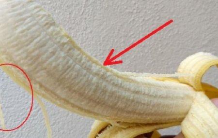 Եթե դուք սիրում եք բանան և նկատել եք բանանի վրայի սպիտակ «թելերը», ահա թե ինչ պետք է իմանաք դրանց մասին