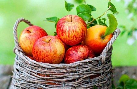 Խնձորով դիետա. մեկ շաբաթվա ընթացքում ազատվեք 4 կիլոգրամից