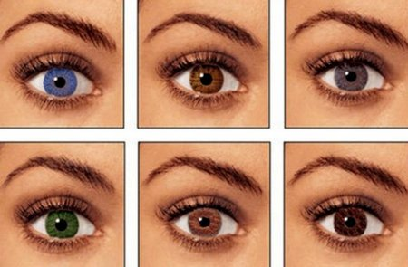 Ինչպես է աչքերի գույնն ազդում ուղեղի կիսագնդերի ակտիվության վրա