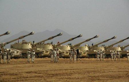 Ֆրանսիական զինատեսակները  Ադրբեջանում