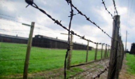Սահմանում կանխվել Է Իրանից արգելված հաբերի ներկրումը Հայաստան