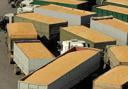 Վրաստանը մինչև տարեվերջ կթույլատրի բեռնատարներով ցորեն տեղափոխել