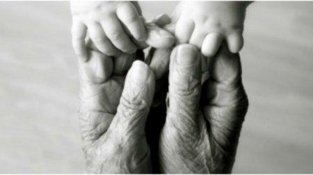 Երեխաները գենետիկական տեղեկատվության մեծ մասը(ԴՆԹ) ստանում են մայրական տատիկի կողմից