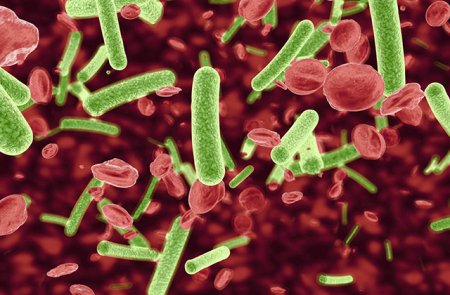 10 մահացու հիվանդությունների բռնկումներ, որոնք կարող են վերադառնալ մոտ ապագայում