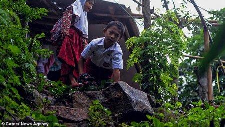Հանուն դպրոցի հաշմանդամ տղան ամեն օր չորեքթաթ 2 մղոն տարածություն է հաղթահարում