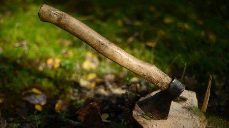 Դաժան սպանություն. նախկինում բռնաբարության համար դատապարտվածը փայտով ևմուրճով  հարվածել է զոհի գլխին