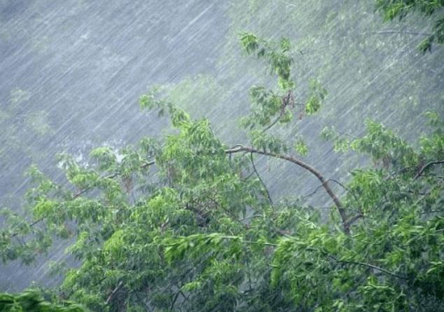 Օդի ջերմաստիճանը կշարունակի նվազել. սպասվում է անձրև և ամպրոպ, քամու ուժգնացում