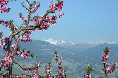 Փոփոխական եղանակը Հայաստանում կպահպանվի՝ կտաքանա, հետո  կցրտի